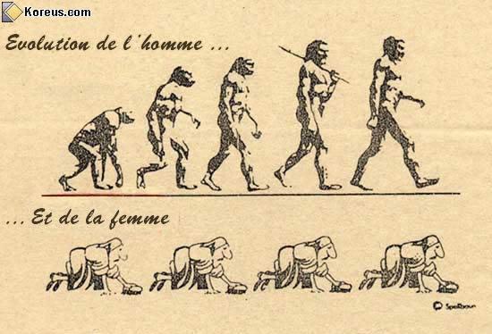 l'evolution de la race humaine dans vrac evolution