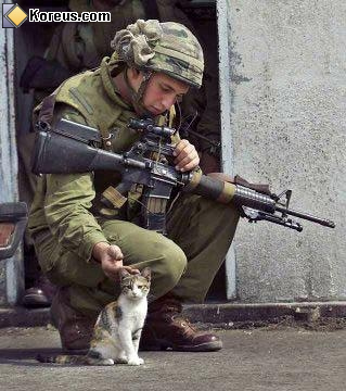 image rigolo militaire caresse chat humour insolite