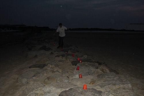 regis entrainement roller sur des rochers